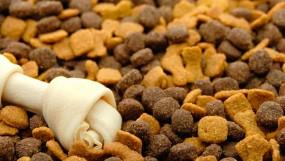 Подобрать корм для собаки