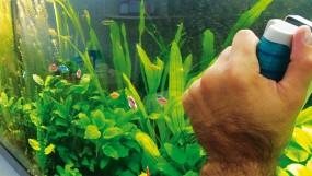 Как правильно ухаживать за аквариумом?