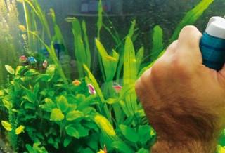 Как правильно мыть аквариум?