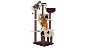 Зачем нужна когтеточка для кошек?