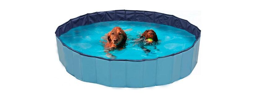 Новинка на сайте – бассейны для собак