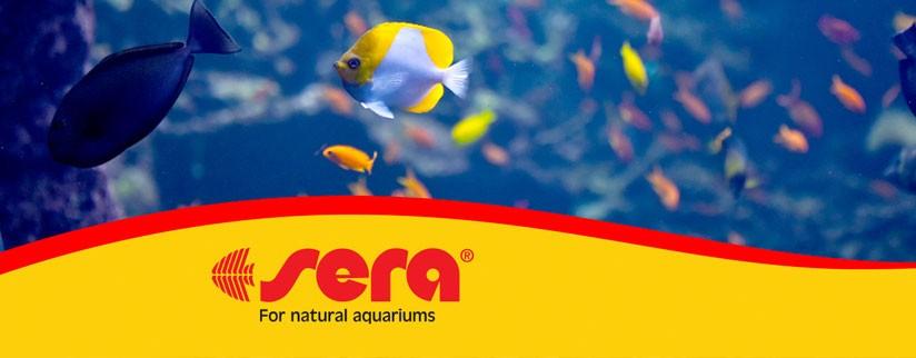 Новинки на сайте – товары для аквариума Sera