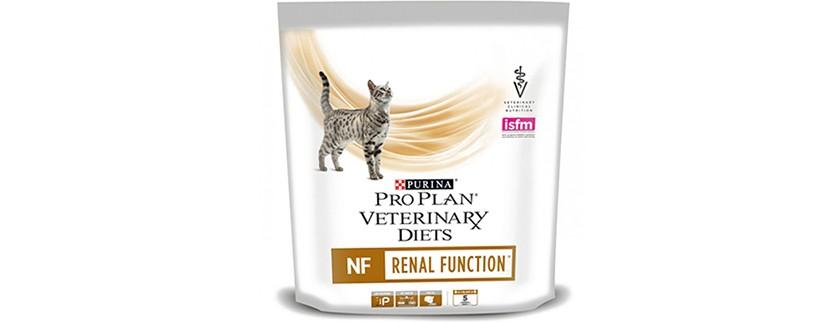 Почечная недостаточность у кошек: причины появления, симптомы, лечение