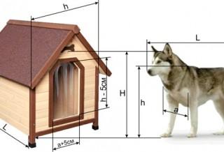 Размеры собачьей будки