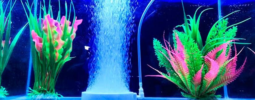 Сколько должен работать компрессор в аквариуме?