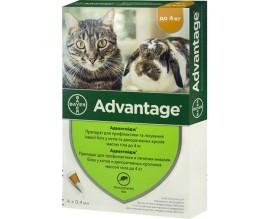 Капли от блох и клещей для кошек до 4 кг Bayer Advantage №40, 4 пипетки