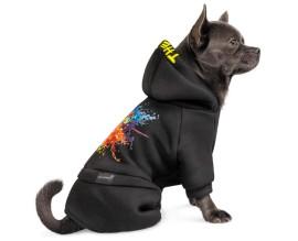Костюм для собак Pet Fashion Flash