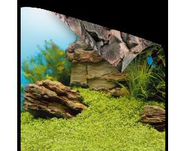 Фон для аквариума Juwel Poster