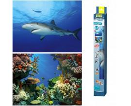 Фон для аквариума Tetra Shark and Coral (200661)