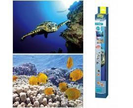 Фон для аквариума Tetra Turtle and Ree (200678)