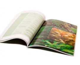 Книга Растительный аквариум. Азы и тонкости содержания растений в аквариуме