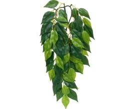 Растение для террариума Exo Terra Ficus