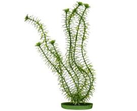 Растение пластиковое Hagen Marina Anacharis для аквариума