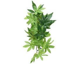 Растение для террариума Exo Terra Abuliton