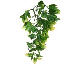 Растение для террариума Exo Terra Amapallo