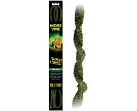 Растение лоза для террариума Hagen Moss Vine S